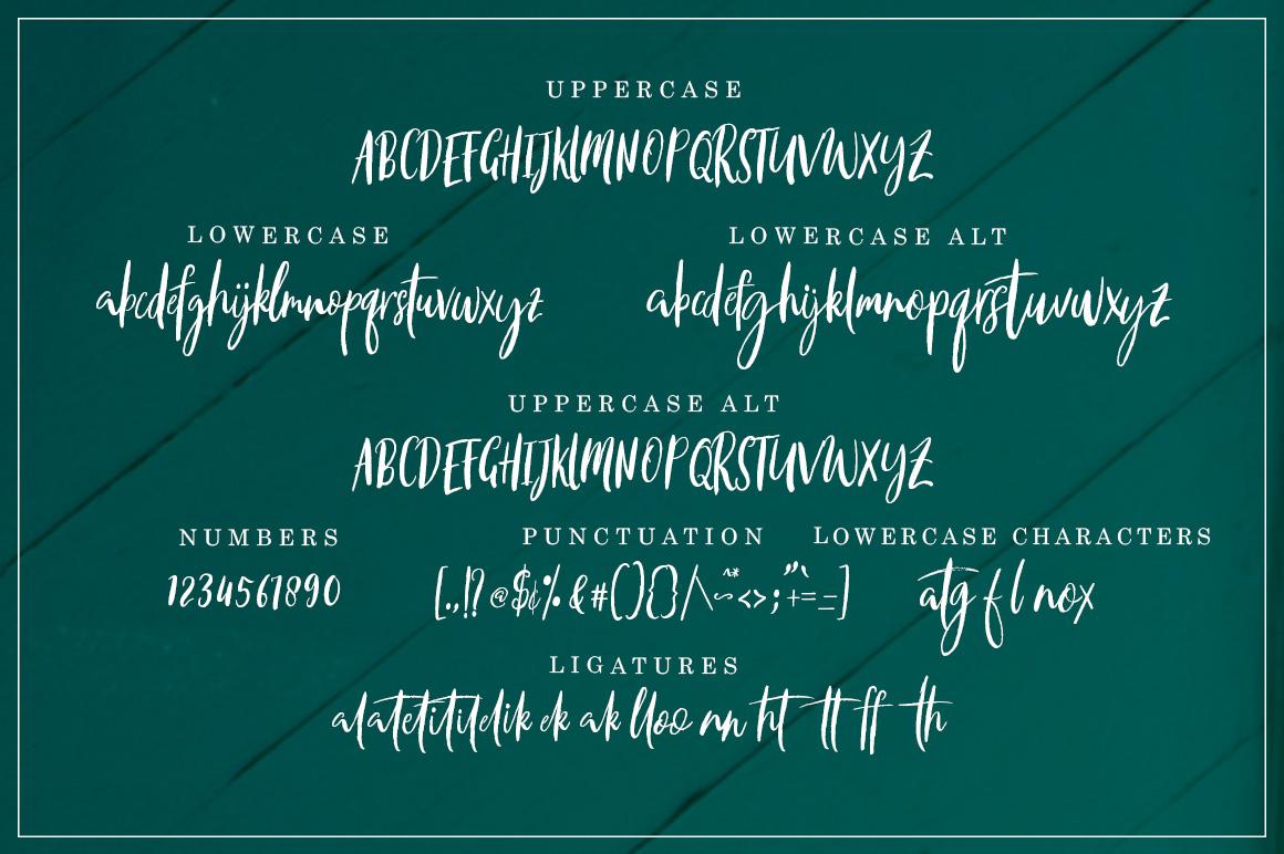 axelentia example image 7