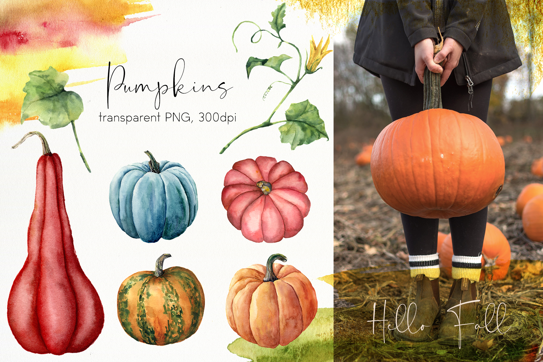 Pumpkins. Watercolor collection example image 3