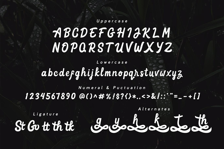 Goteru | Eyecatching Script Font example image 5
