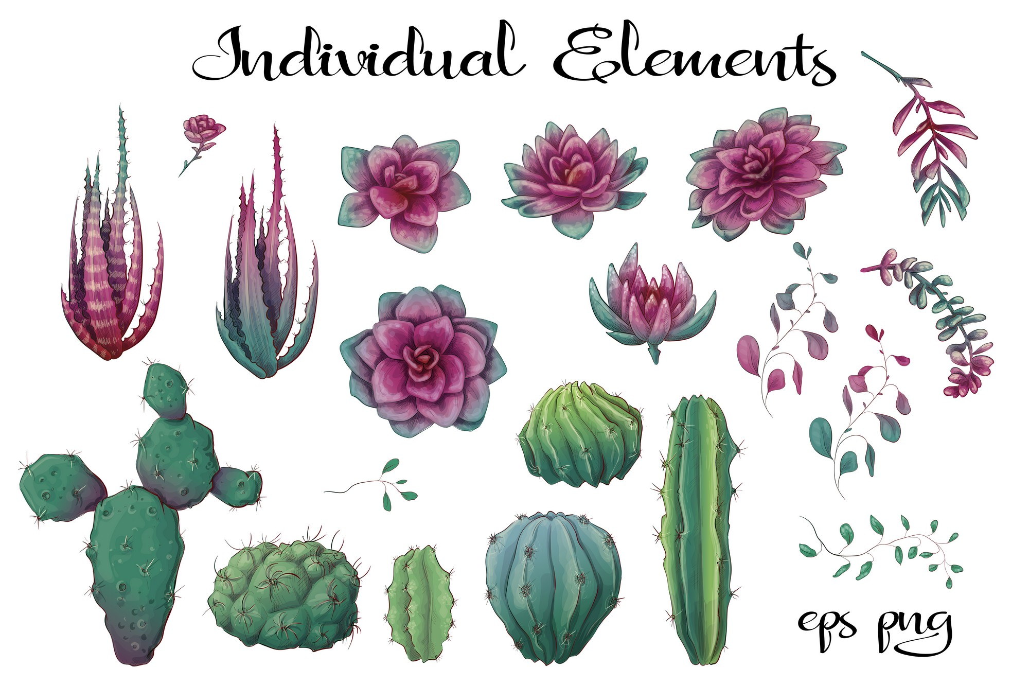 Cacti & Succulents in purple example image 4