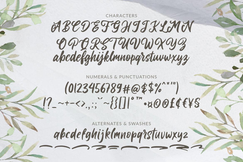 Laritta - Handbrush Script example image 8