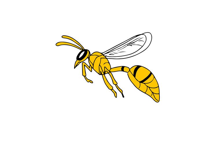 Wasp Flying Drawing example image 1