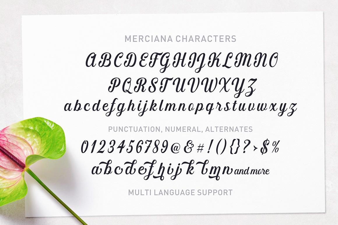 The Amazing Font Bundle - Vol I example image 9