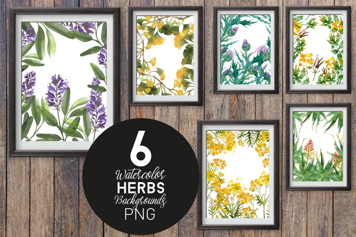 Medical Herbs. Vector & watercolor example image 4