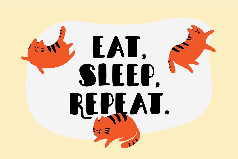 Sleepy Fat Cat example image 6
