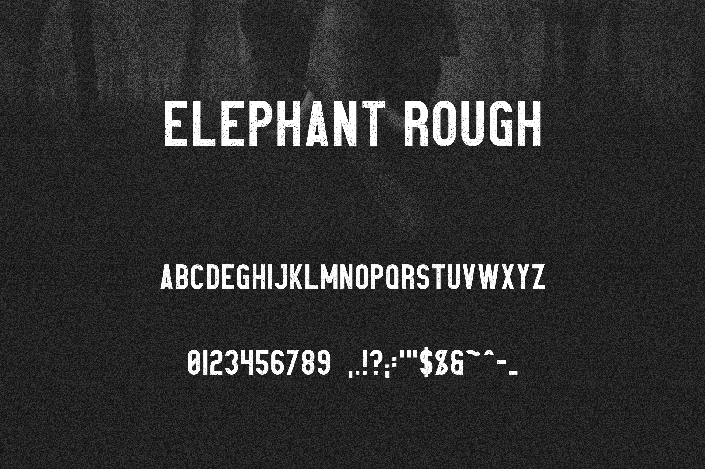 Elephant Font Family example image 9