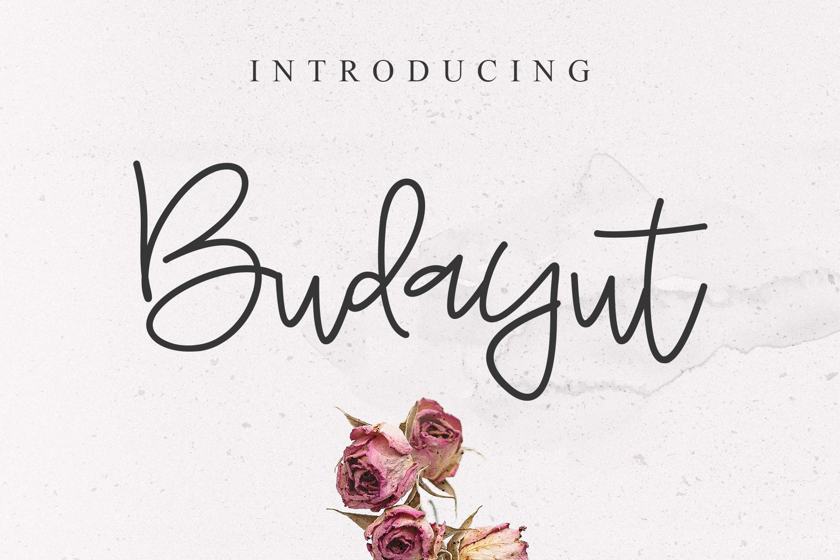 Budayut signature font example image 1