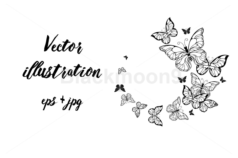 Flight of Contour Butterflies example image 1