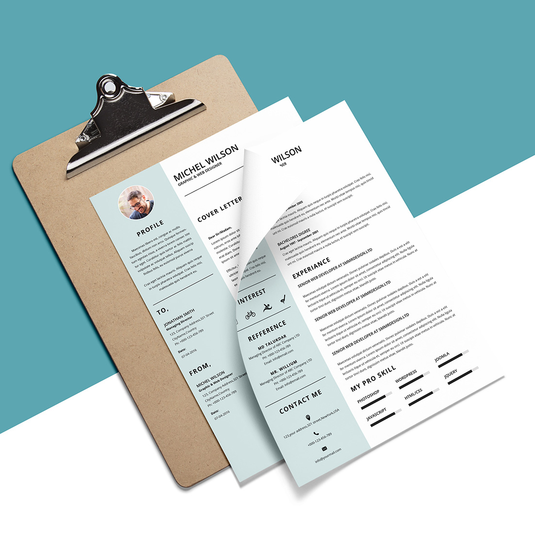 Clean Resume example image 3