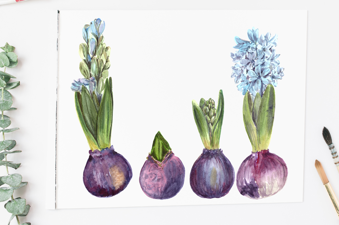 Watercolor Hyacinth Clip Art Set example image 3