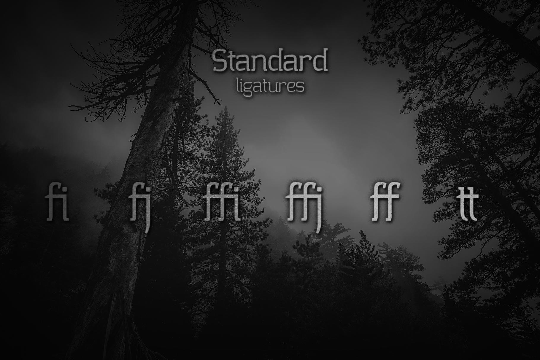 Collazio Serif Family Typeface example image 2
