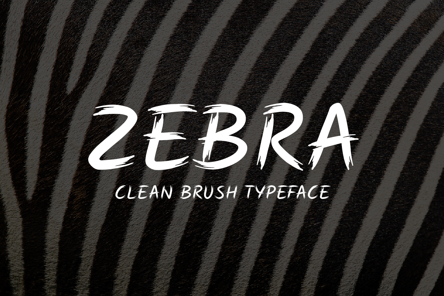 ZEBRA Clean Brush example image 2