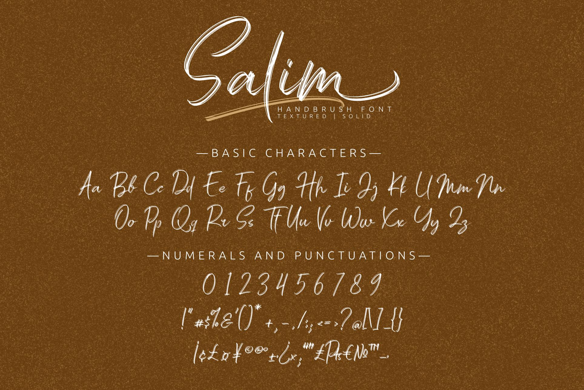 Salim - Handwritten Font example image 12