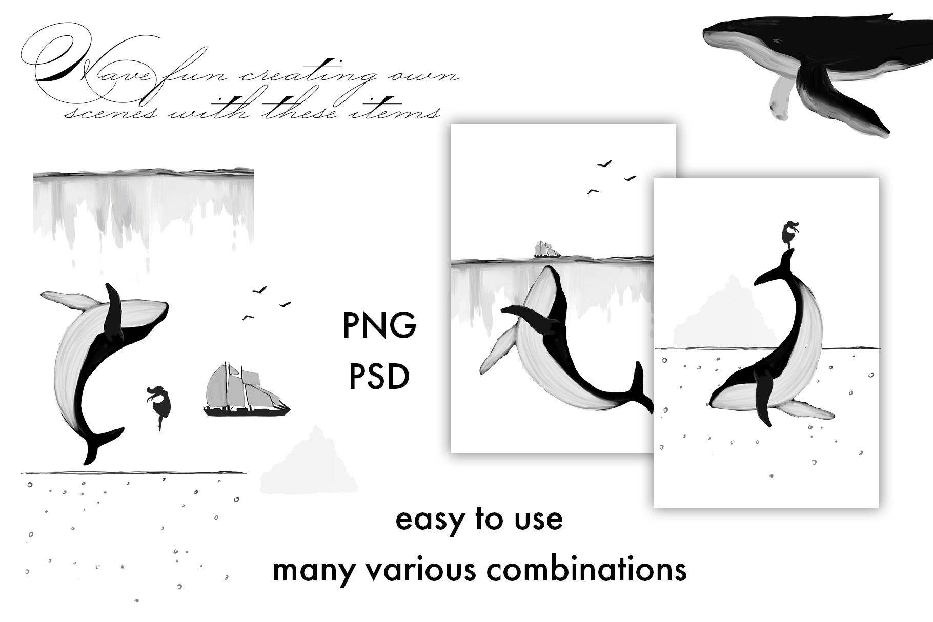 Black Whales illustrations example image 4