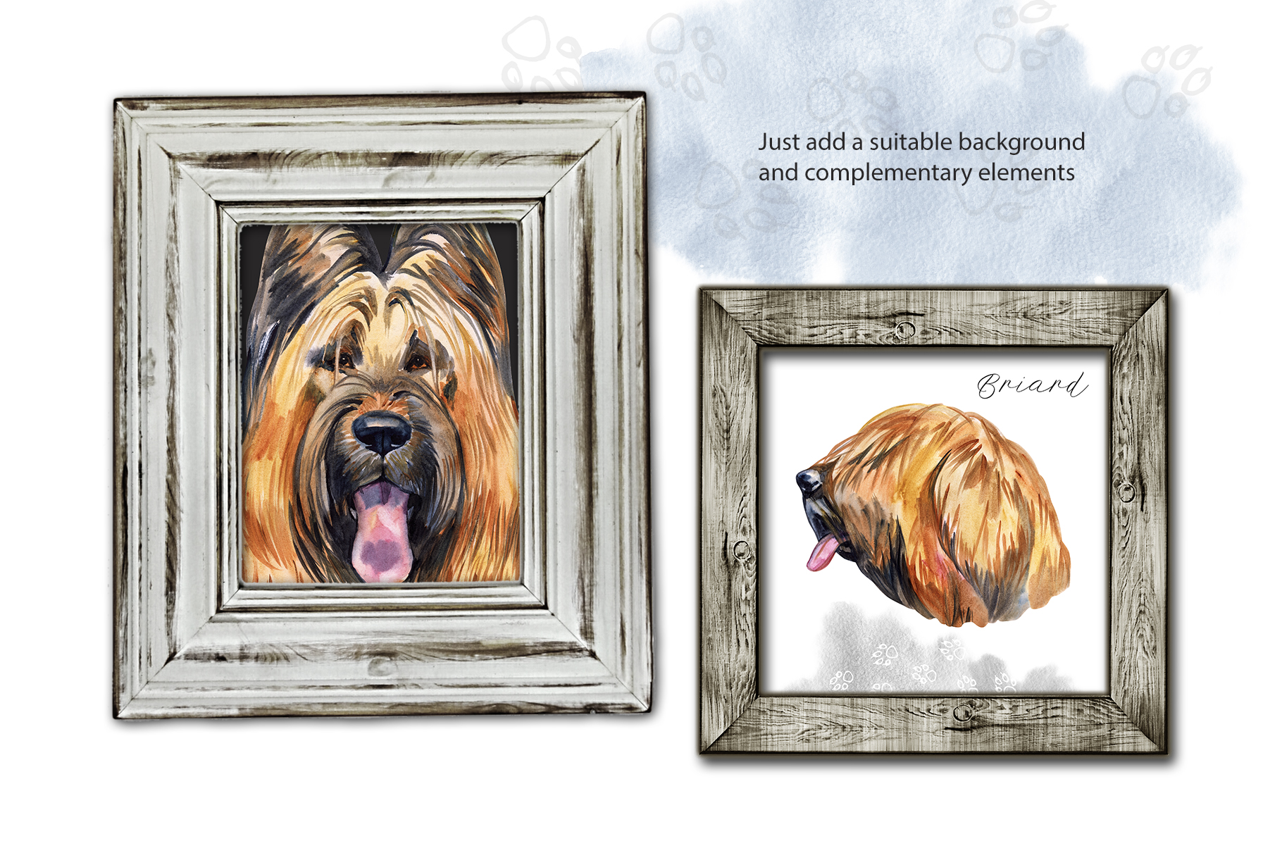Watercolor dog. Briard example image 3