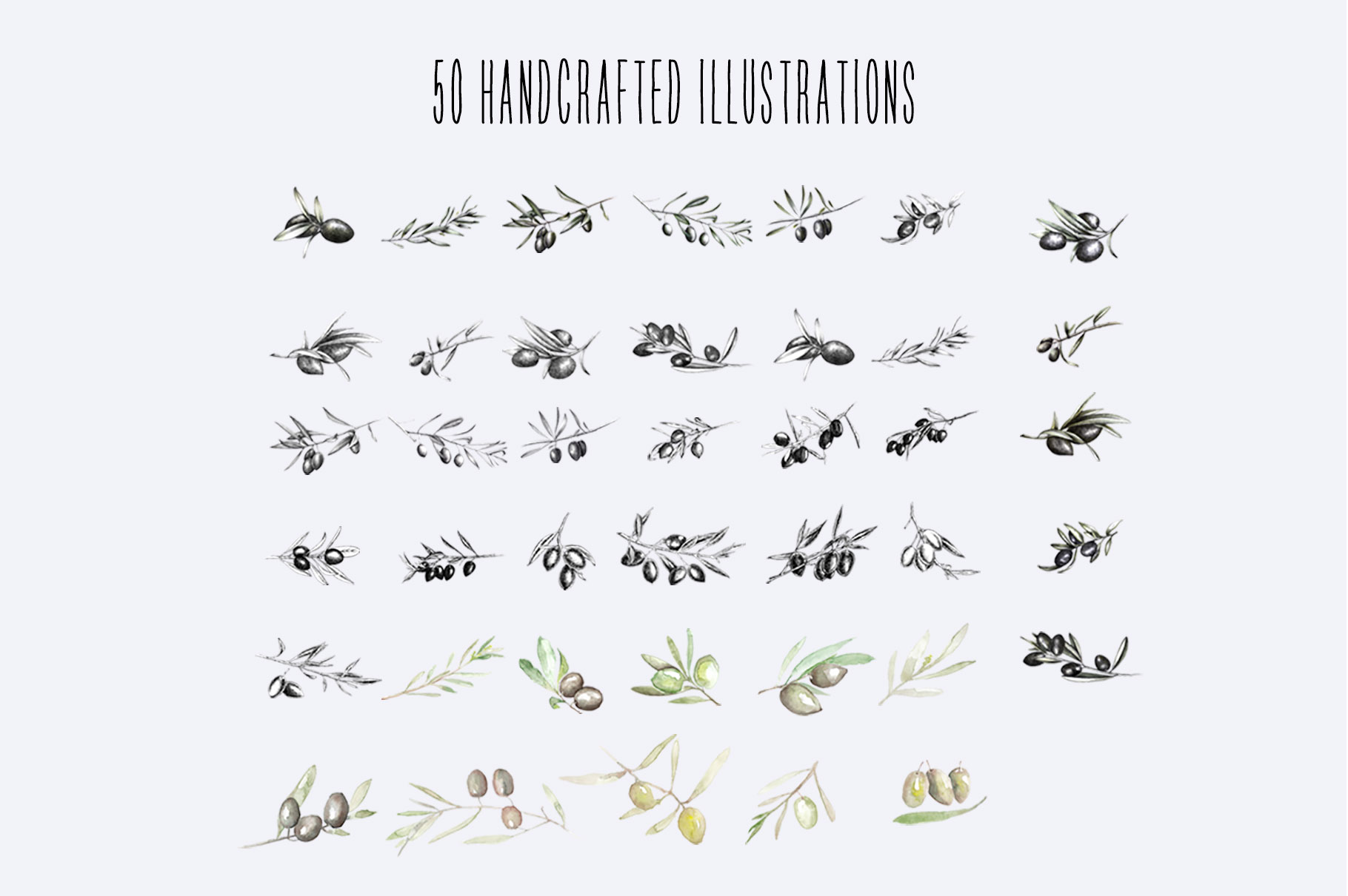50 Shades Of Olive Hand Drawn Illustrations Mega Pack example image 4