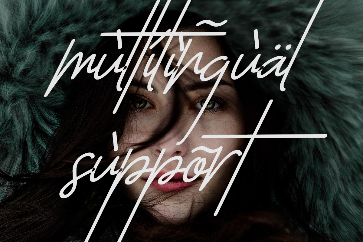 The Sayinistic Signature Font example image 13