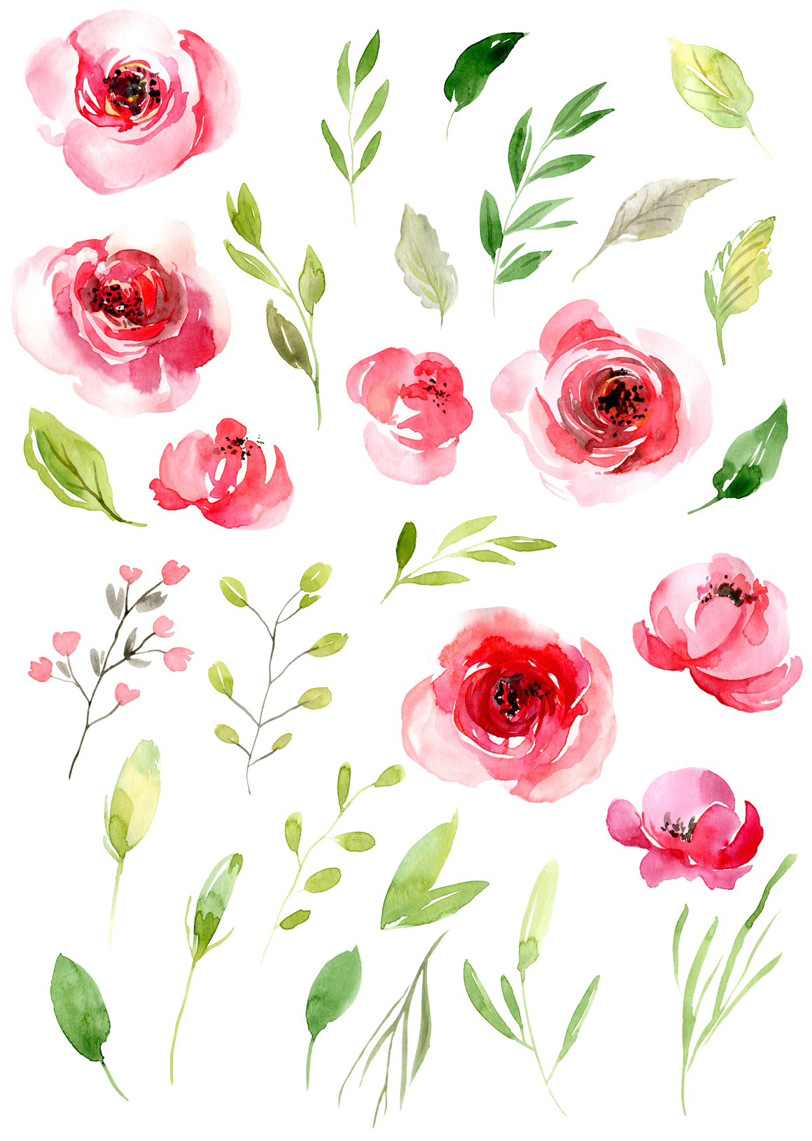 Watercolor pink roses flowers leaves PNG example image 2