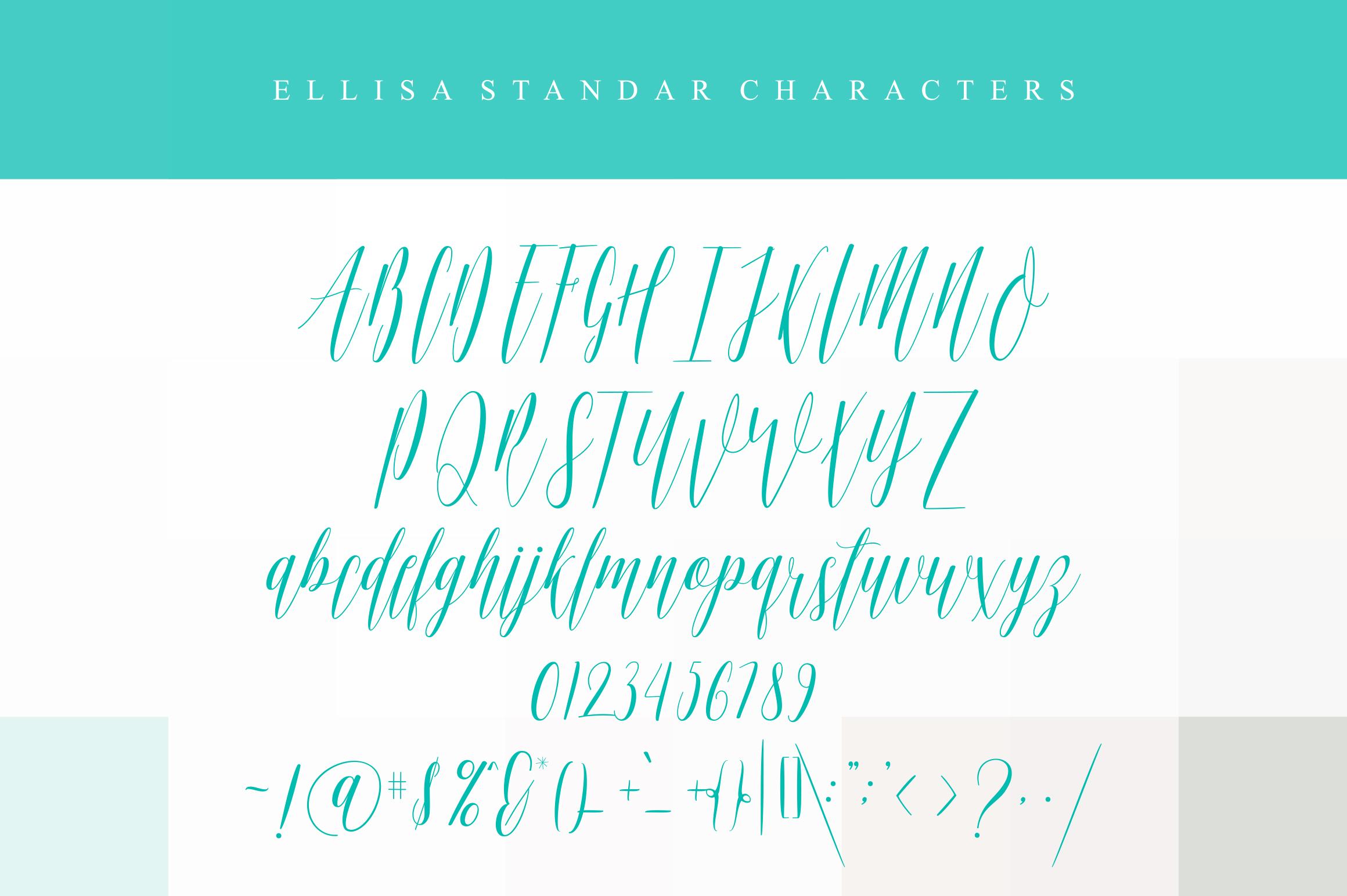 Ellisa example image 5