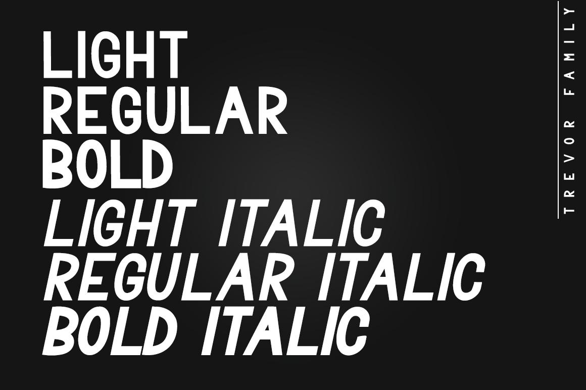 Trevor - Elegant Sans Serif Family Font example image 2