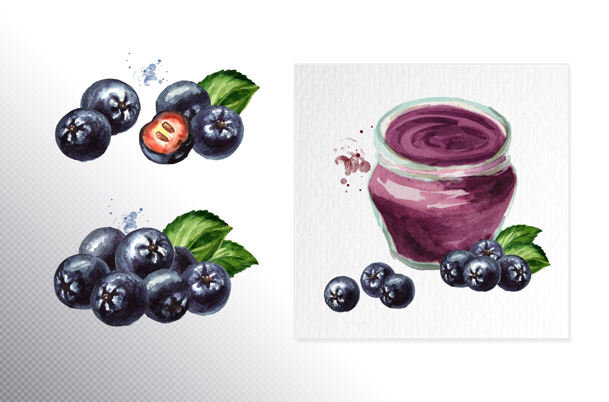 Aronia. Watercolor collection example image 5
