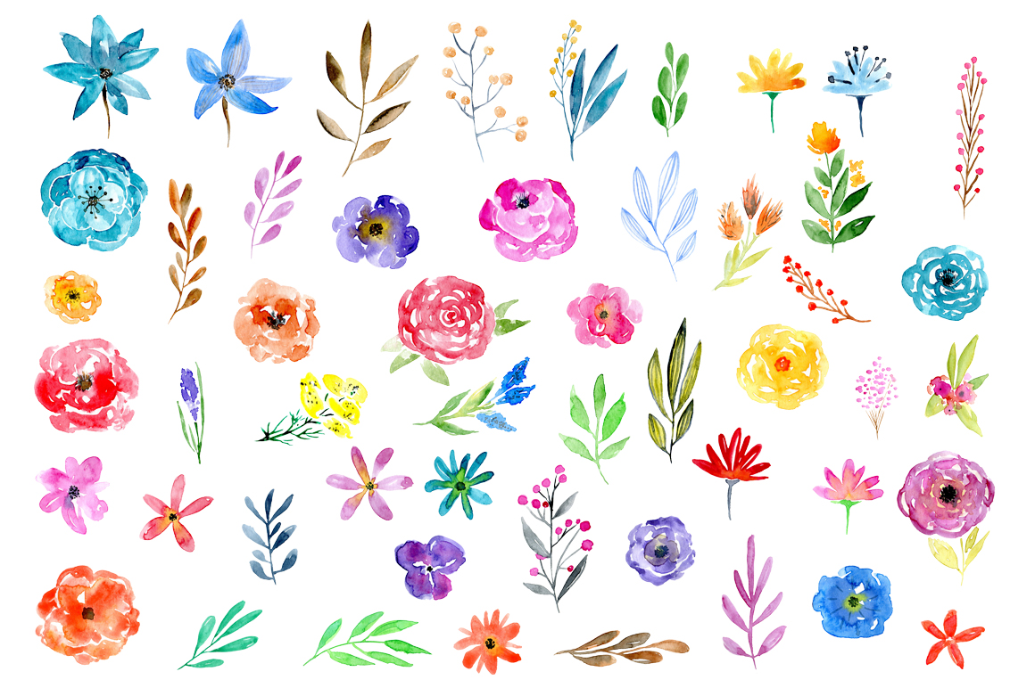 51 Watercolor floral elements png example image 2