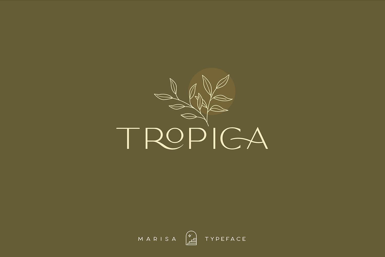 Classy Marisa - Elegant Fashion Stylish Typeface example image 12