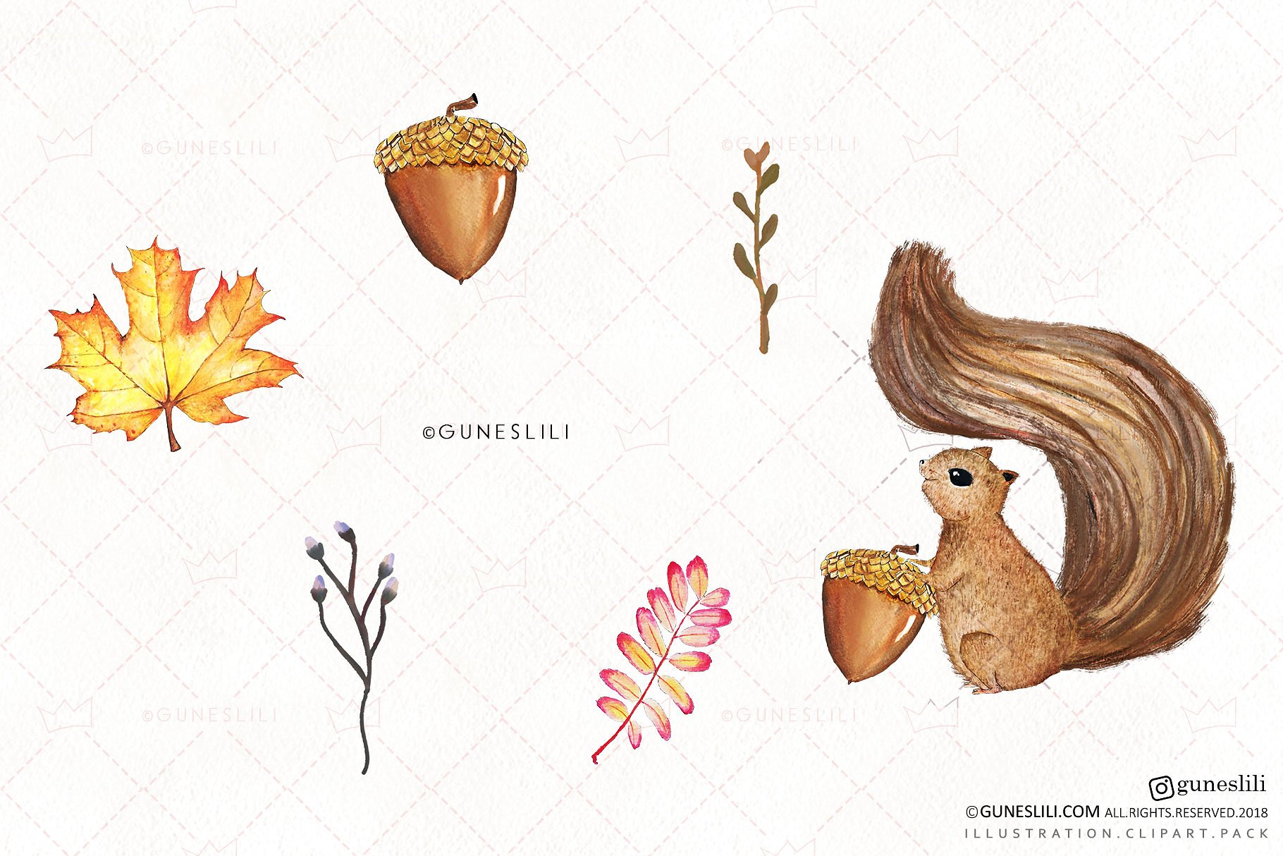 Watercolor Autumn Clipart Hand Painted Fall Graphics example image 4
