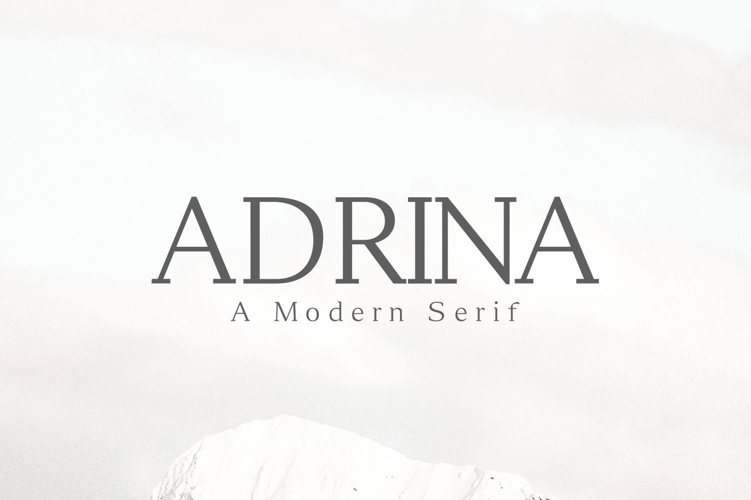 Adrina Modern Serif Font Family example image 1