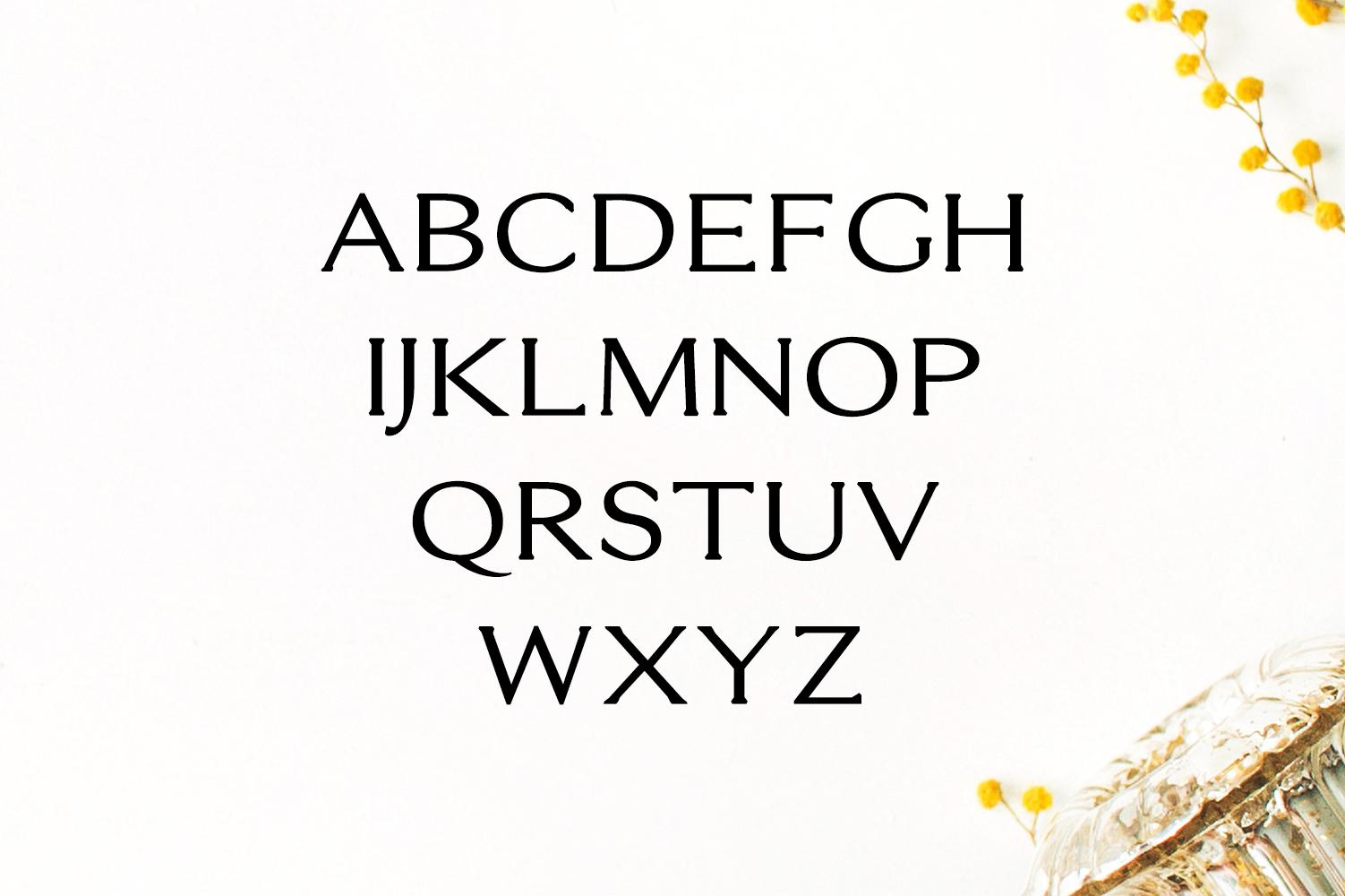 Erynn Serif Font example image 2