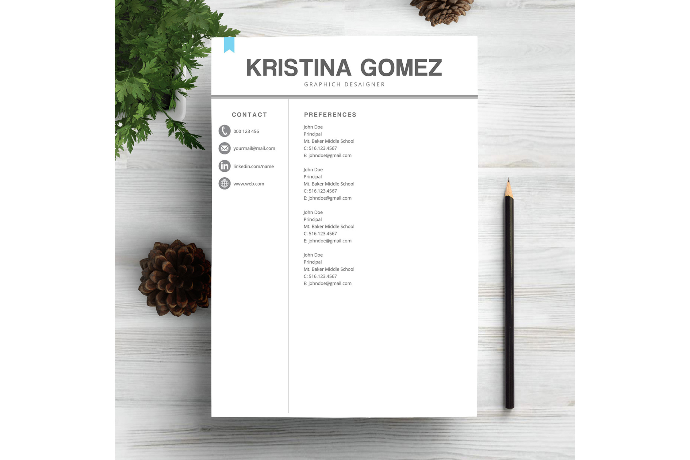 Feminime Resume Template example image 3