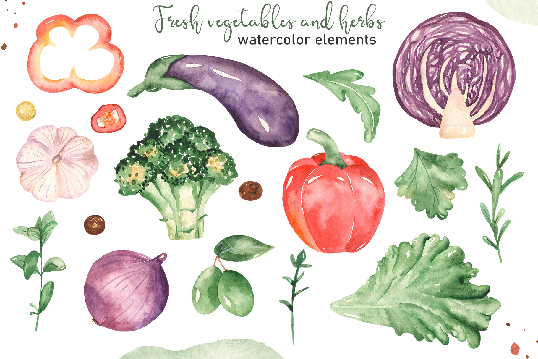 Vegetables and herbs Watercolor collection Clipart example image 10
