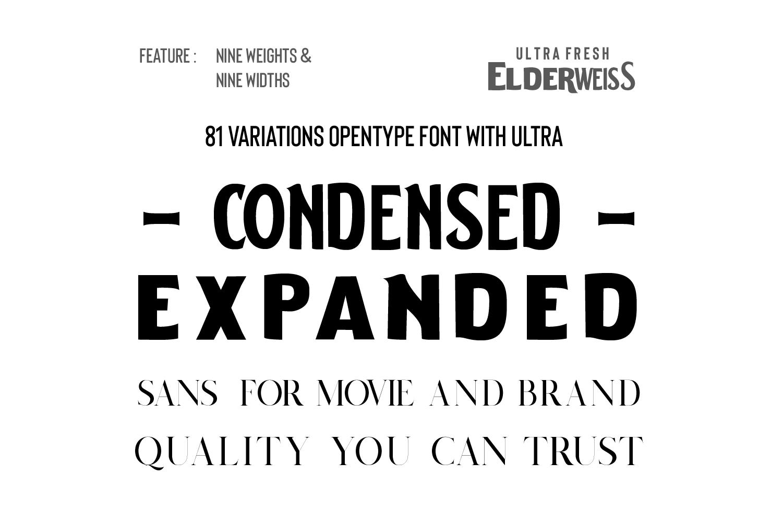Elderweiss - An Experimental Sans Serif example image 6