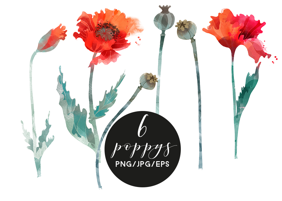 Watercolor poppy example image 3
