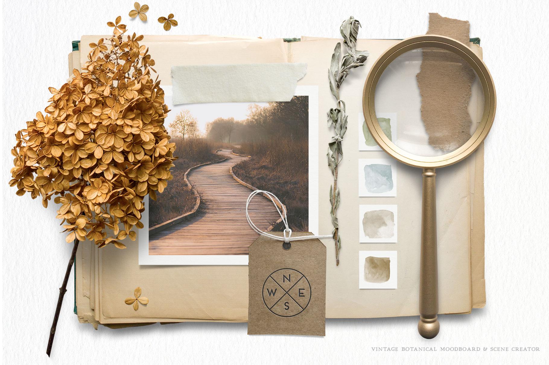 Botanical Moodboard Scene Creator example image 12