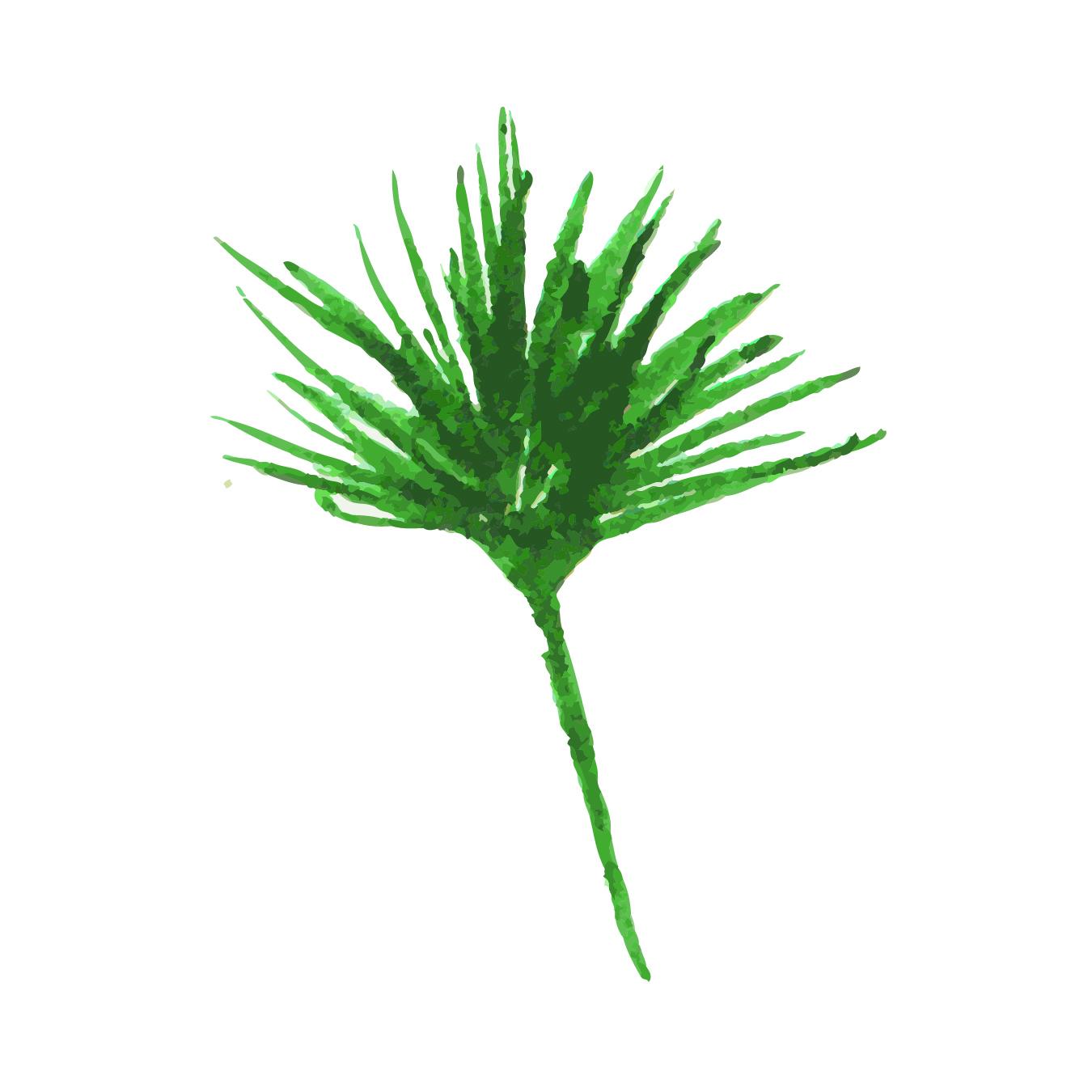 Tropicla Breeze clip art bundle example image 5