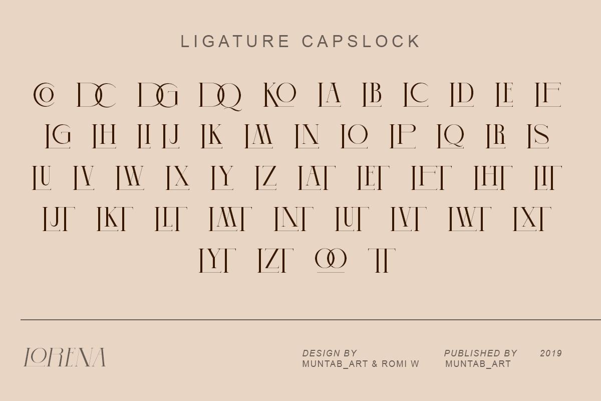 Lorena | Modern Serif Font example image 9