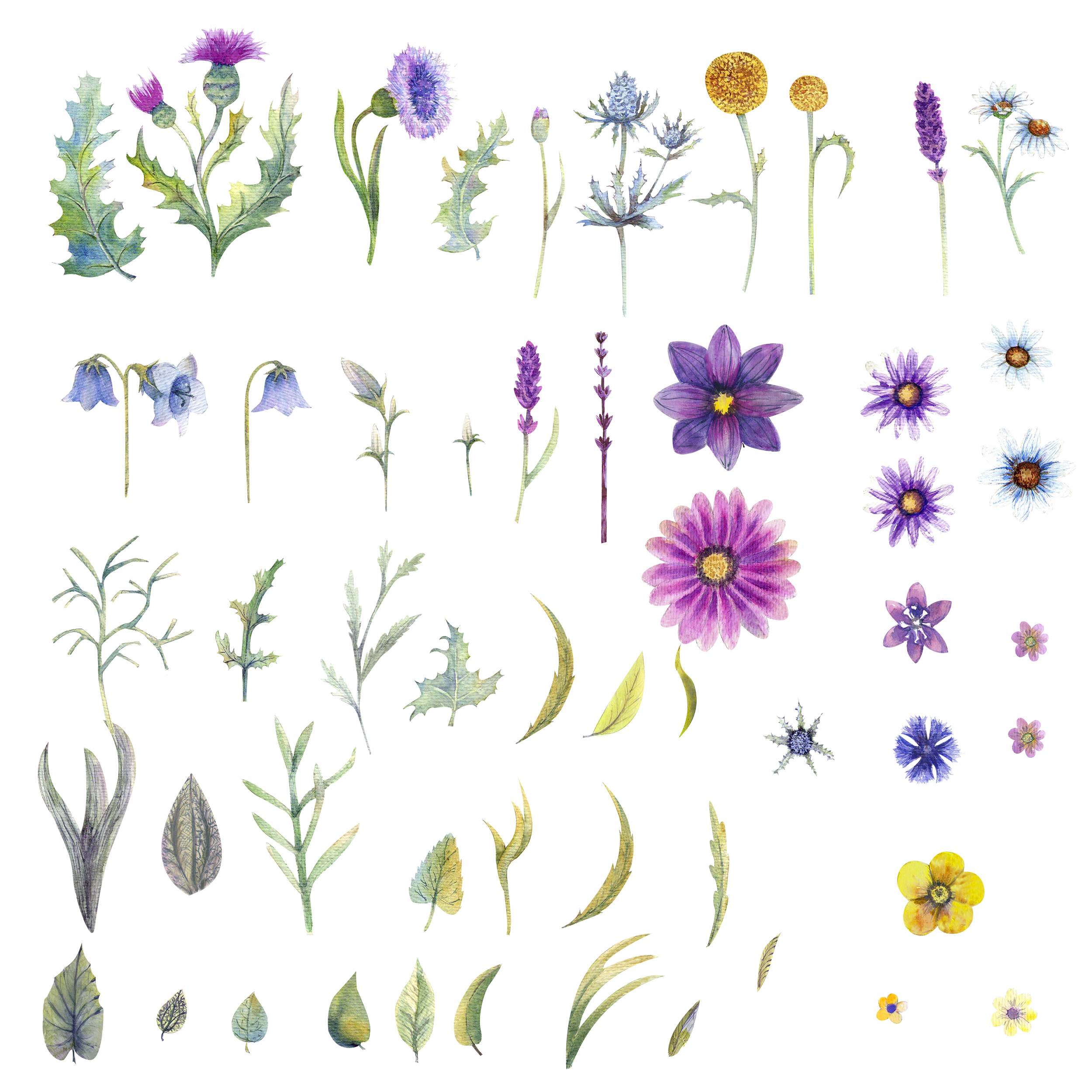 Wild flowers watercolor example image 10
