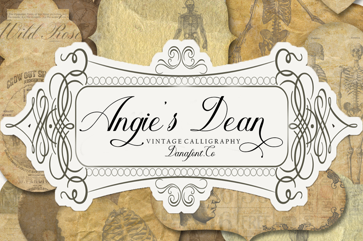 Angie's Dean example image 1