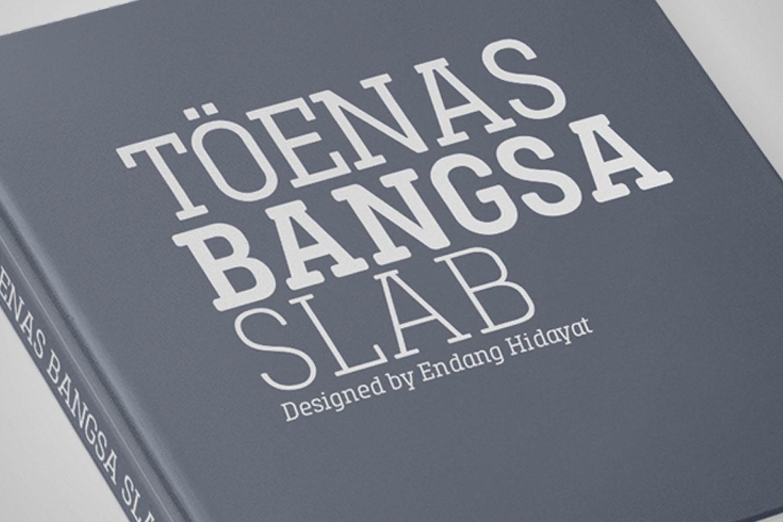 Toenas Bangsa Slab example image 9