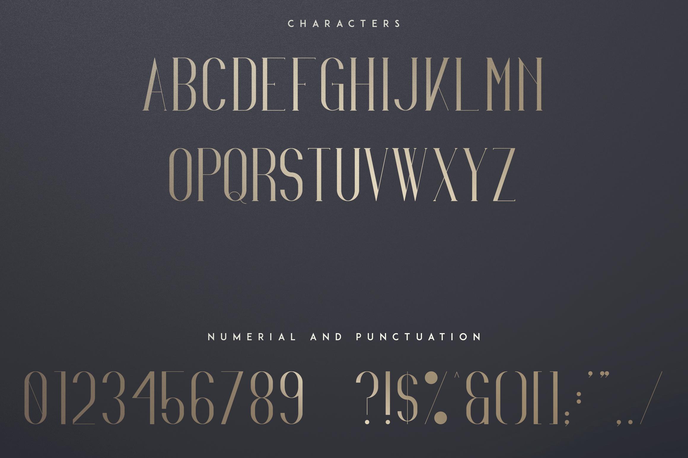 Irina Luxe Serif Font example image 8