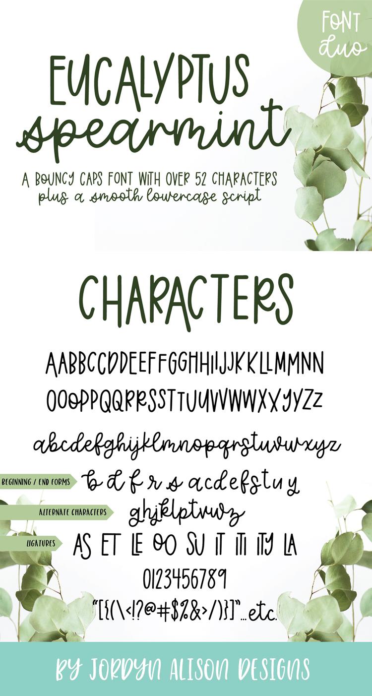 Eucalyptus Spearmint, A Smooth Monoline Font Duo example image 12
