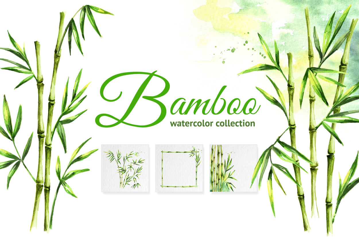 Bamboo. Watercolor collection example image 1