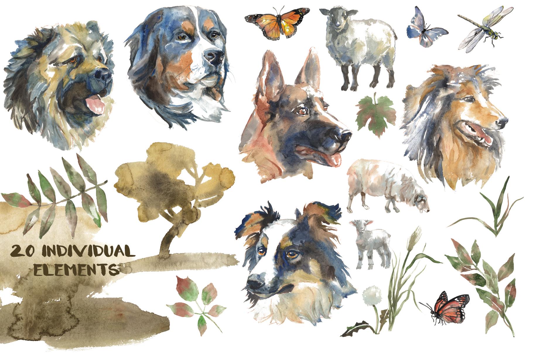 Shepherd dogs watercolor set example image 2