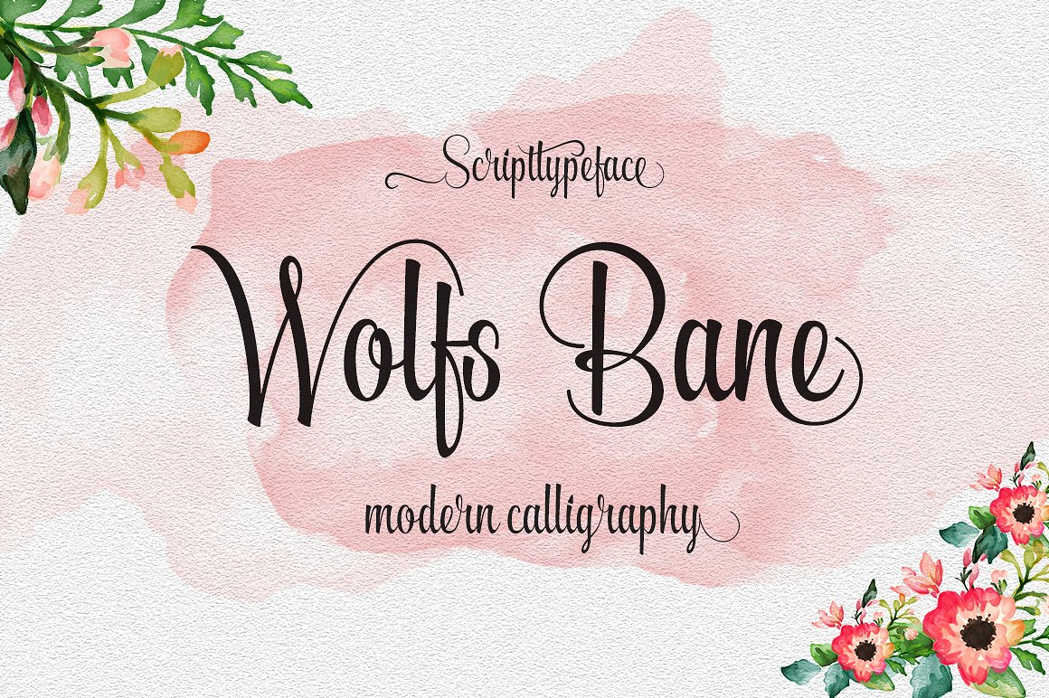 Font Bundle includes 54 fonts in 40 Typefaces example image 15