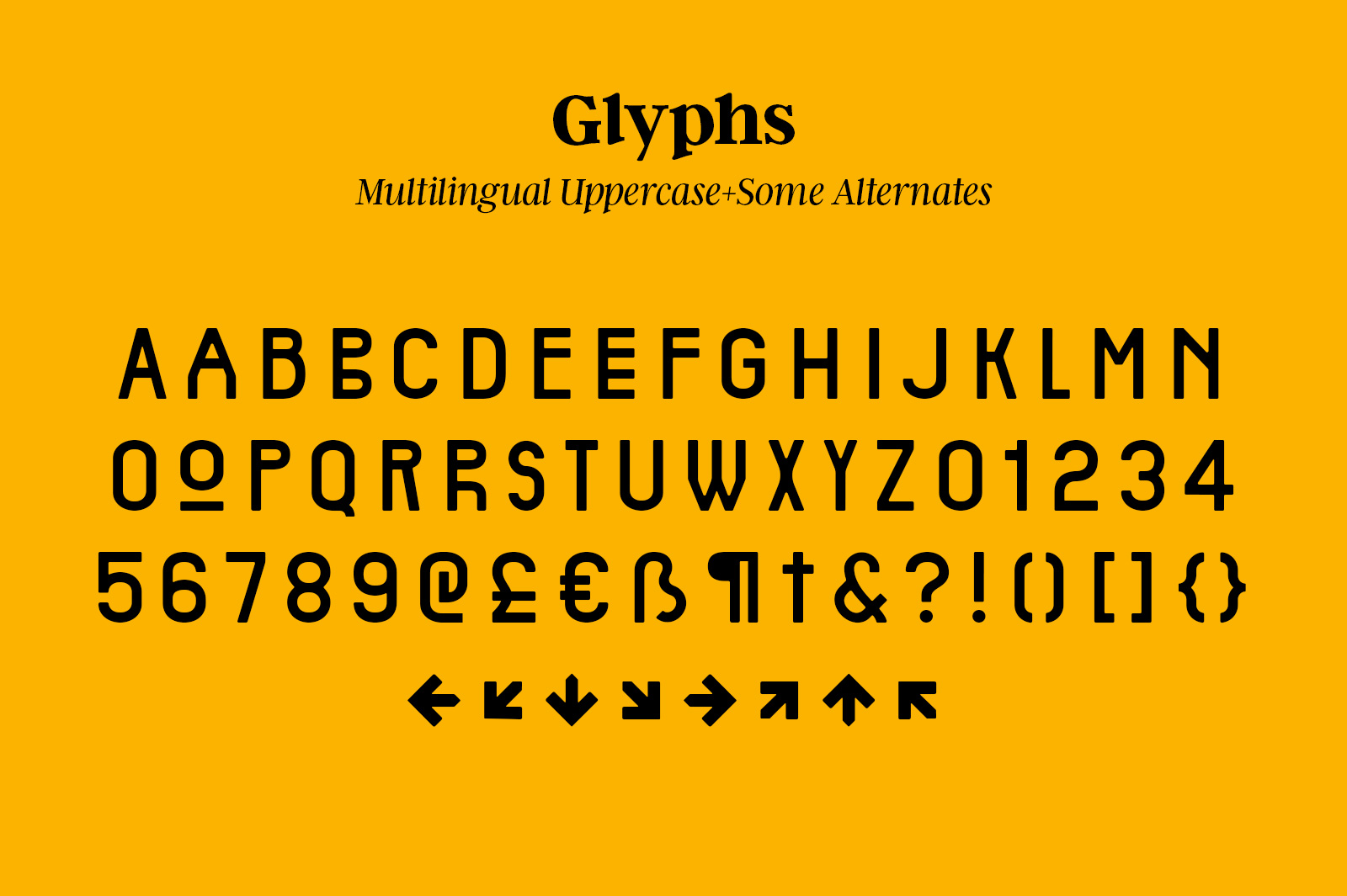 Carnot Typeface example image 2