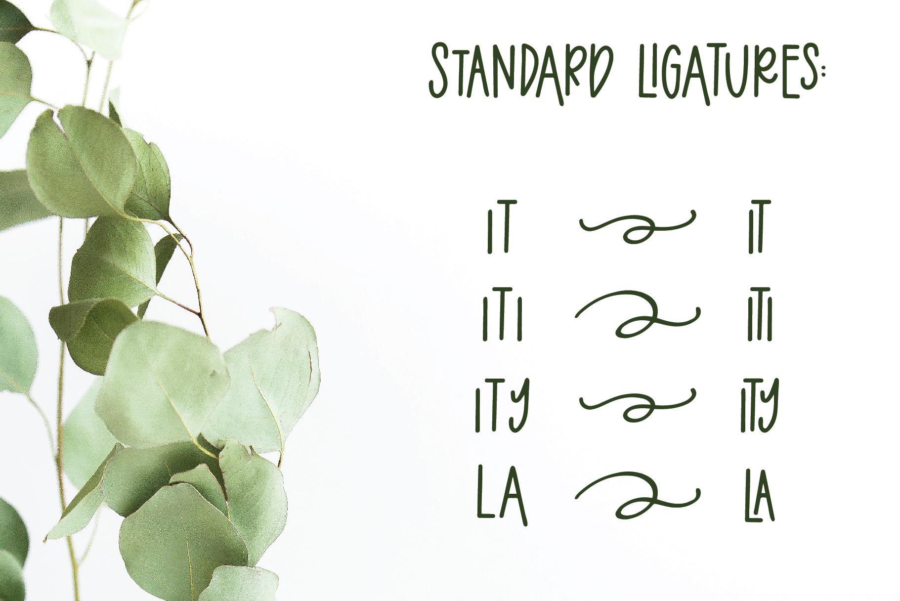 Eucalyptus Spearmint, A Smooth Monoline Font Duo example image 8