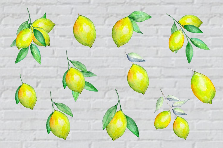 Watercolor Lemon Clipart, Tropical Fruit example image 2