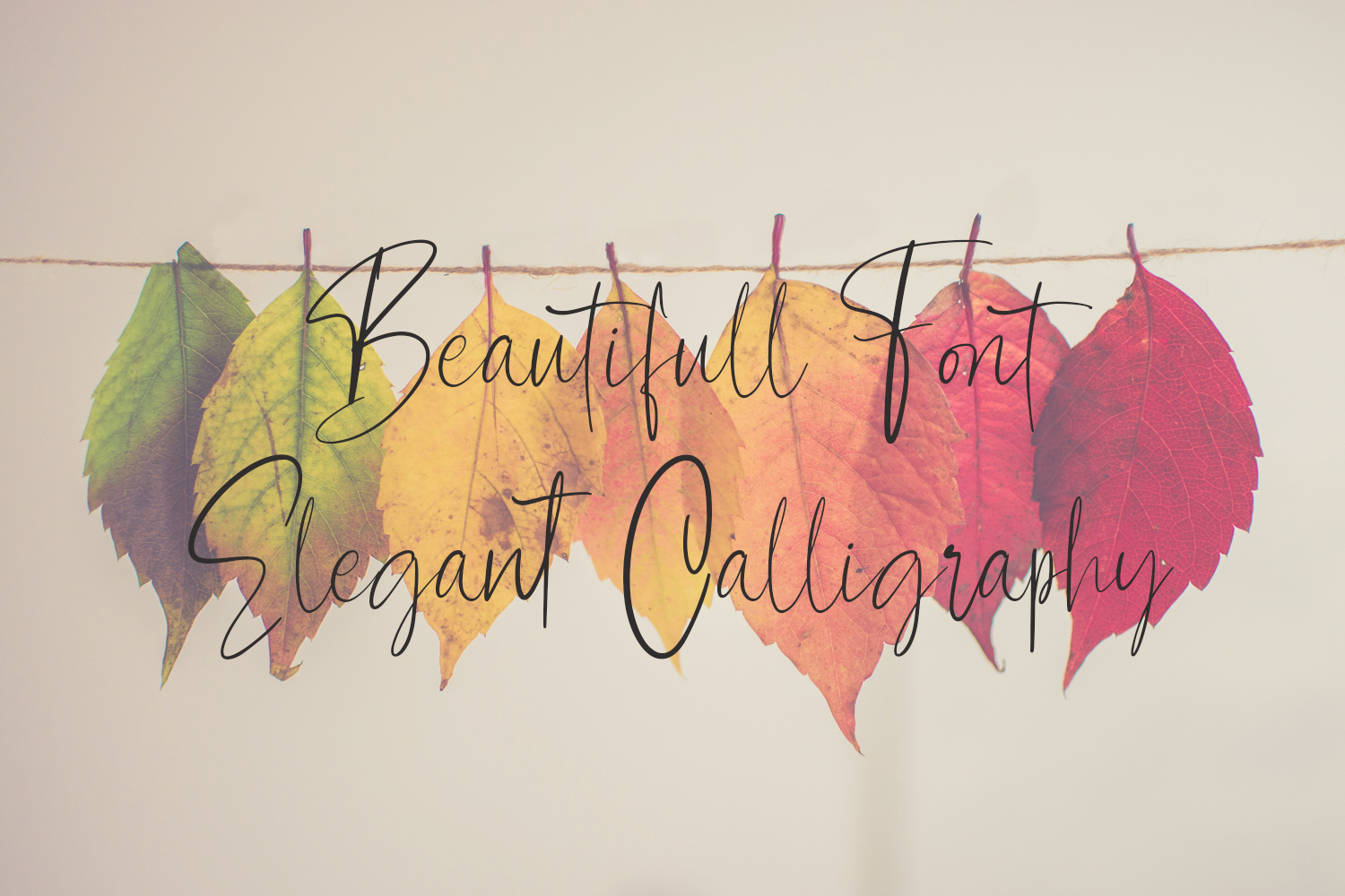 Contributor Calligraphy Font example image 4