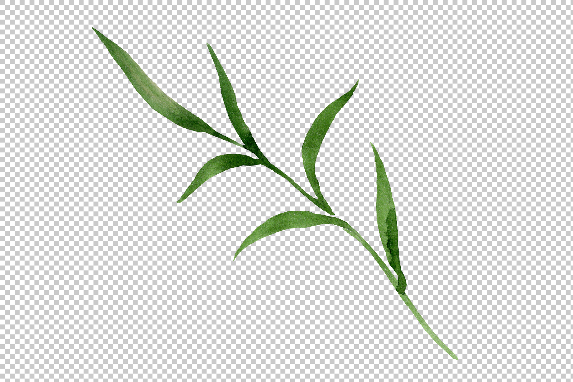 Wildflower lemon lily PNG watercolor set example image 4